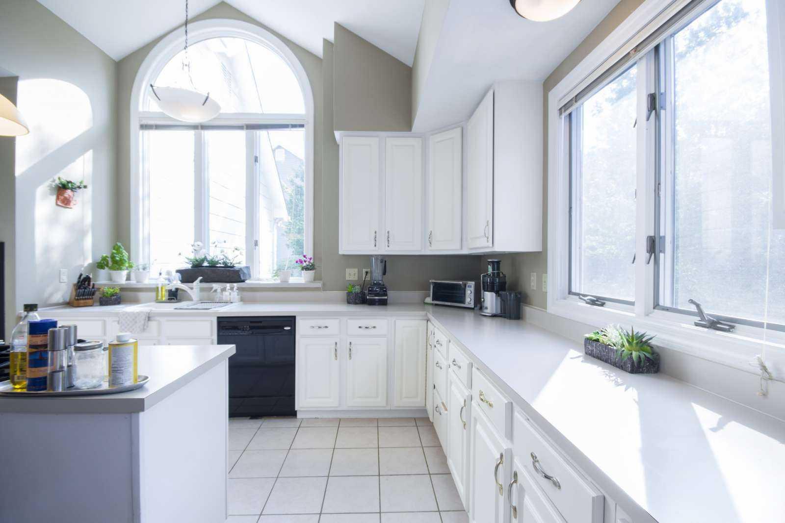 window-replacement-palatine